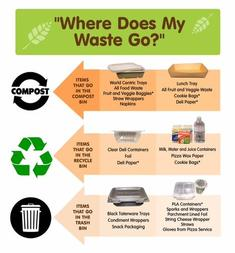 Sorting your food waste